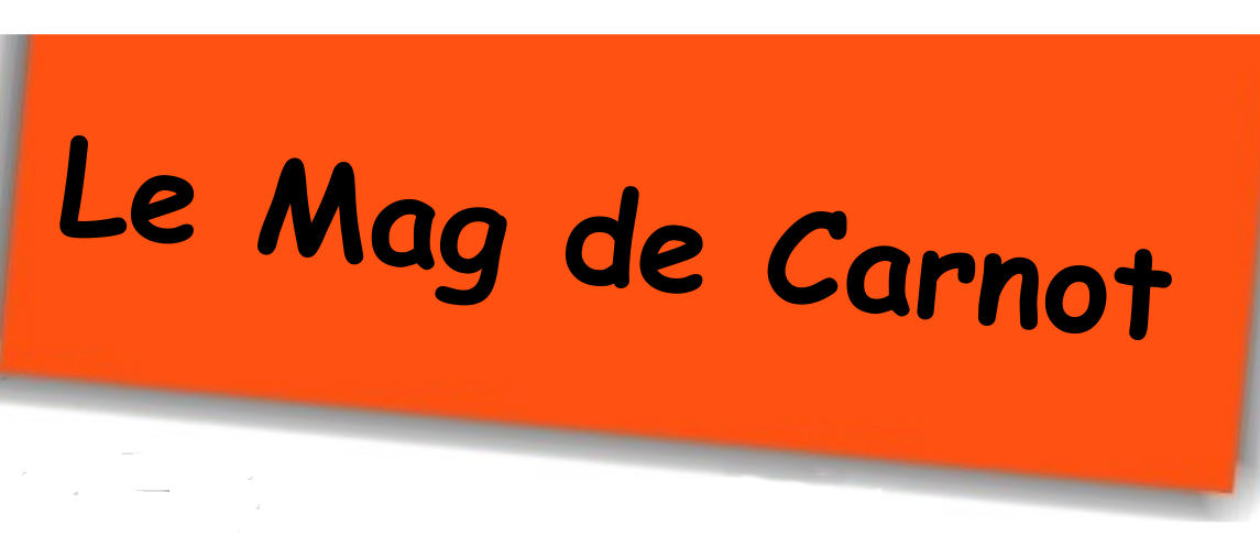 mag-carnot.png